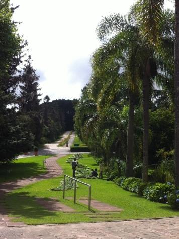 Muita área verde para caminhar