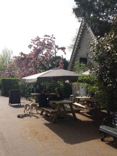 Café Regents Park