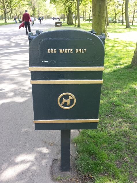 Lixo pra cakita do dog